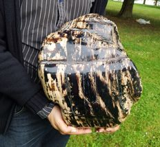 Beautiful and huge polished amber from Sumatra - exceptional size - 13.3 kg