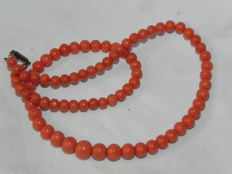 Korallenkette Coral necklace