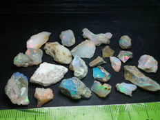 Natural Rough Welo Opal - 10 to 22 mm - 98,2 cts  19,64 gr