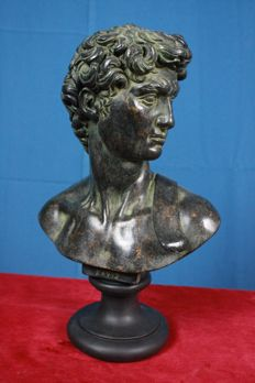 Bust of David in beautifully bronzed composite