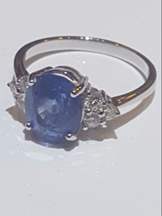 Ring – White 18 kt gold – Diamonds, 0.22 ct – Sapphire – Size 15.
