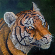 Gary Wakeham - Tiger (India)