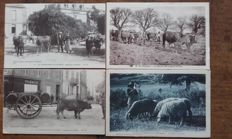 "France, selection of 49 beautiful cards on the theme of ""Périgord autrefois"""