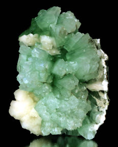 Giant Specimen of green Apophyllite with Stilbite  - 16 x 11 cm - 1540 gm