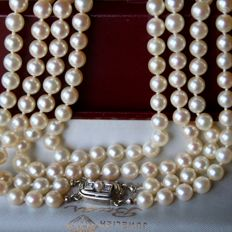 2-row heavy Antique pearl necklace with genuine Japanese See /Salty pearls AAA+ and Antique white gold buckle with 2 diamonds and pearl. Excellent state!
