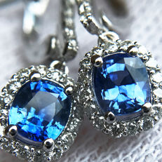 1.92ct Ceylon Sapphire and Diamond Earrings made of 18 kt white gold - NO RESERVE -