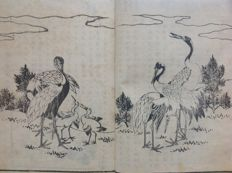 Antique booklet with 14 diptych and 11 single page black/white bird and flower woodcut prints. Title: 花鳥画譜 (kachou gafu) – Japan – 1886
