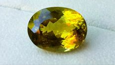 Apatite - Yellowish Green - 23.86 ct