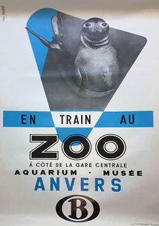 Studio Peso - Zoo Antwerp (elephant seal) - ca. 1950