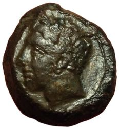 Greek Antiquity - Zeugitania, Carthage, North Africa - Æ (16mm; 5,00g.), Time of Siculo-Punic - Head of Tanit / Horse - SNG Cop. 1022