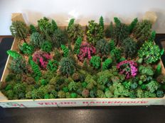 Scenery H0 - Package with trees 150 pieces and fresh Iceland moss 100 grams