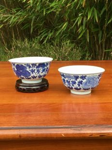 A couple of blue and white porcelain bowls - China - 19th century