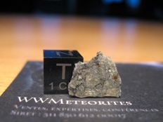 Moon Meteorite (official) NWA 8668 in presentation box - 461mg