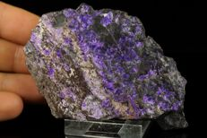 Purple Sugilite fibrous hairs on matrix, very rare mineral - 9,7 x 6,9 x 1,7 cm - 165gm