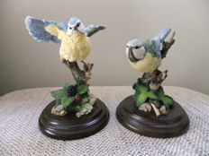 Pair of Royal Doulton porcelain  birds