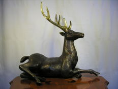 Unknown artist - Sculpture bronze - Deer - Probably 1st half or mid 20th century - approx. 48 cm high!