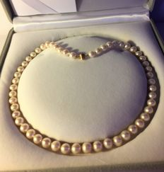 Necklace with genuine Cultured Pearls. Length: 44 cm **Period: 1950-60**.