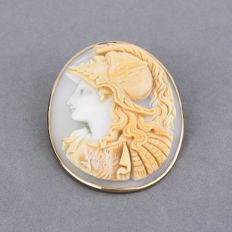18 kt yellow gold – Pin – Cameo – Diameter: 45.40 mm x 35.80 mm (approx.)