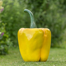 Large yellow pepper