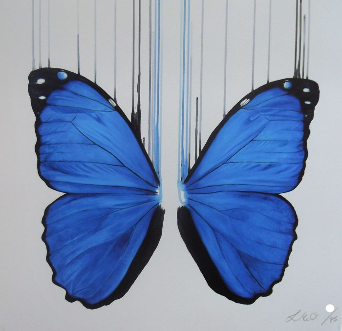 Louise McNaught  - Morpho