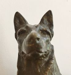 A bronze statue of shepherd dog - indistinctly signed - circa 1900