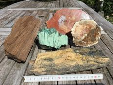 Interesting collection of Petrified Wood - 12 to 35cm - ca 7000gm  (5)