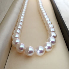 Japanese Akoya pearl necklace, 9 and 10 mm diameter.