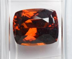 Grenat Hessonite - 5.92 carats - No Reserve Price