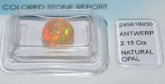 Fire opal – 2.15 ct – No Reserve Price
