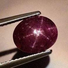 Star Ruby - 4.31 ct