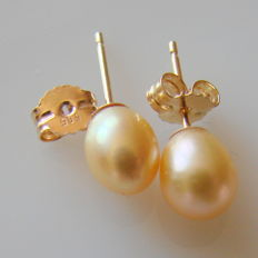 Yellow gold (14ct) earrings with cultured  pearls  in golden color.  measuring 7.mm/6mm  in diameter.