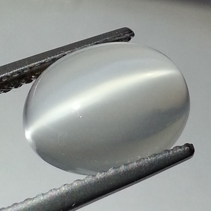 Cat's Eye Moonstone - 3.90 ct