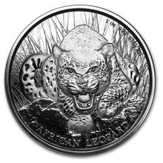 Ghana - 5 Cedis - African leopard 2017 - 1 oz 999 silver coin - Edition only 50,000 pieces