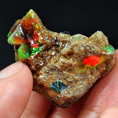 Natural Ethiopian crystal black opal play of colour rough specimen - 33x27x21mm - 16gm - 81,2 Ct