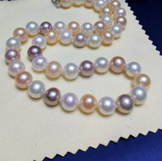 Natural coloured multi-colour cultivated pearl necklace, 11 to 12 mm, 375  gold ---