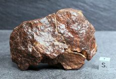 NWA 10021 - L5-6 - Chondrite - Meteorite with nice primary abrasion crust - 313.80 g