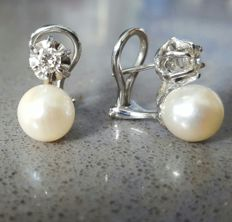 18 kt white gold - Freshwater cultured pearls and diamonds of 0.40 ct earrings
