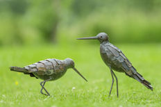 Two godwits made of metal