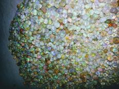 Lot of natural Welo Fire Opals - 60 ct (350)