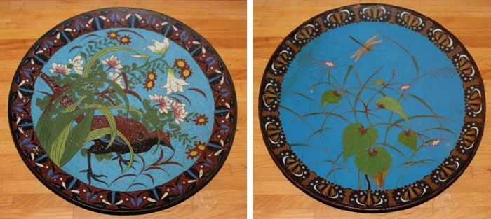 Pair of Cloisonnèè Plates - Dragonfly/Bird - Japan - 19th century