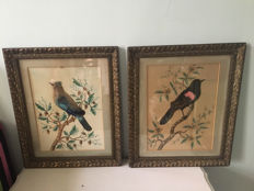 Two Victorian paintings with real feathers