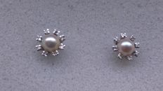 Akoya pearl stud earrings with 14kt white gold backs and a total of 16 diamonds