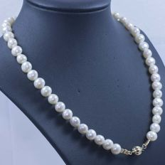 Akoya pearl (Ø 8.8 mm) necklace with 18 kt gold clasp - 45 cm - no reserve price