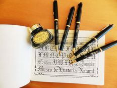 Caligraphy Set Reform by Mutschler. Five writing pieces with calligraphic nibs.