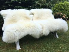 Extra large and thick, natural white sheepskins - Ovidae sp. - 150 x 95cm and 150 x 84cm  (2)