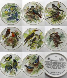 Collection of 8 Tirschenreuth Porcelain Plates - Europaeische Singvoegel Series
