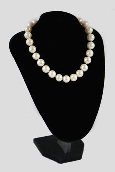 Necklace with Australian pearls, 15.50/16.50 mm - CISGEM