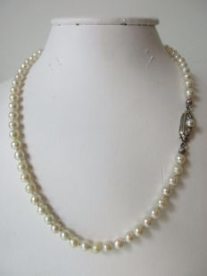 14 kt white gold – Salt water pearl necklace – length 40 cm.