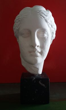 Beautiful head of the goddess Hygeia
