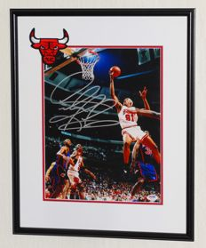 Dennis 'The Worm' Rodman original signed photo - Deluxe Framed + Certificate of Authenticity from PSA